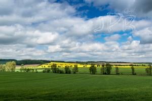 landschaft im mai g
